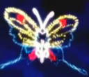 Butterfree's Avatar